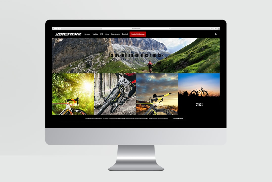 rto-diseño-pagina-web-mendiz